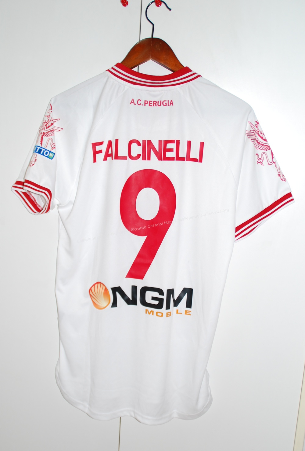 1415_falcinelli_2